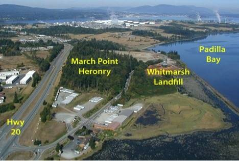 """March Point """"Whitmarsh"""" Landfill Cleanup"""